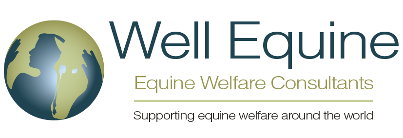 Well Equine © Equine Welfare Consultants
