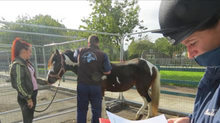 Equine Health Clinics 2016