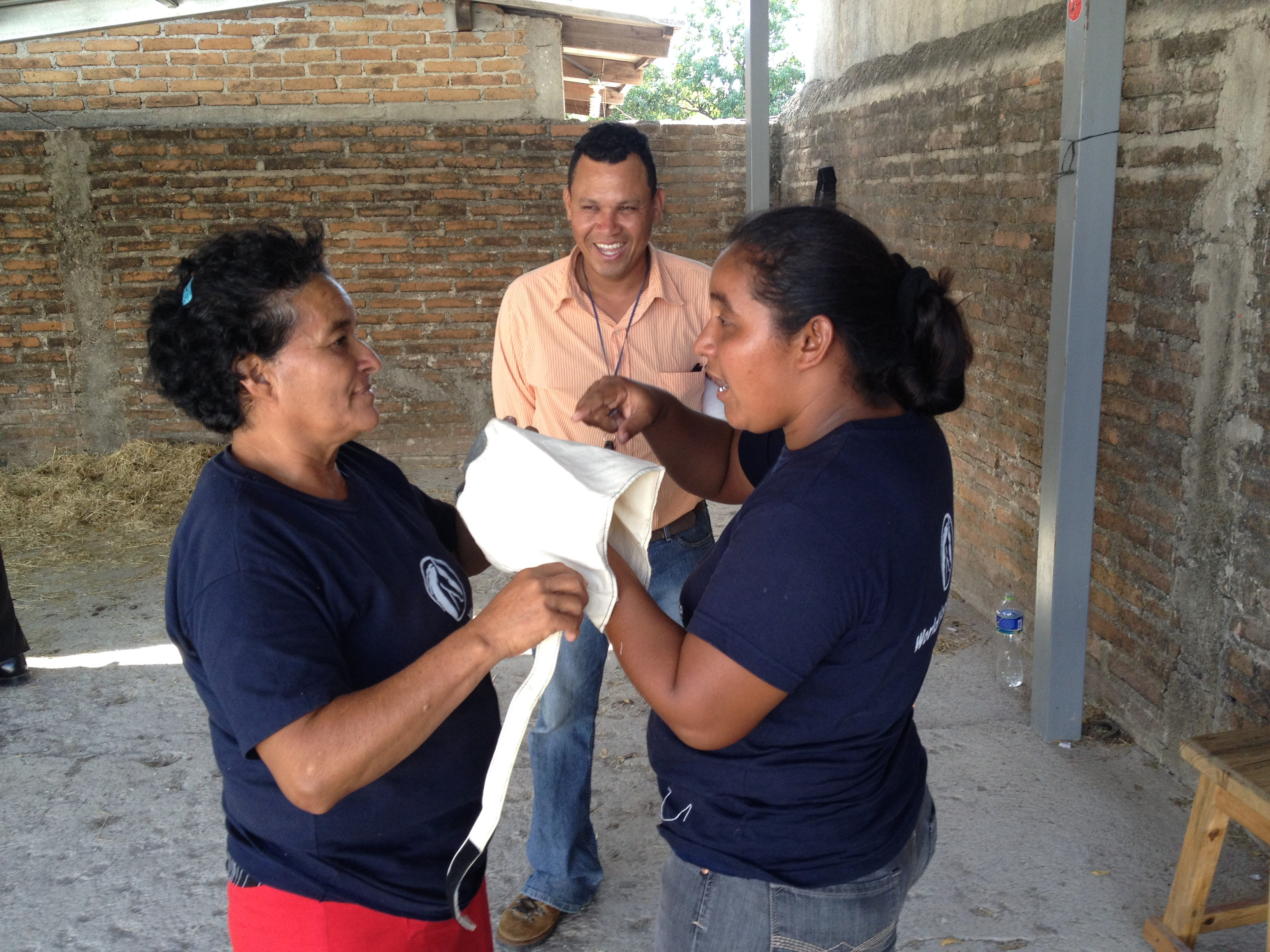 Poultice Boot Development  WHW Honduras