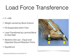 Load Transference