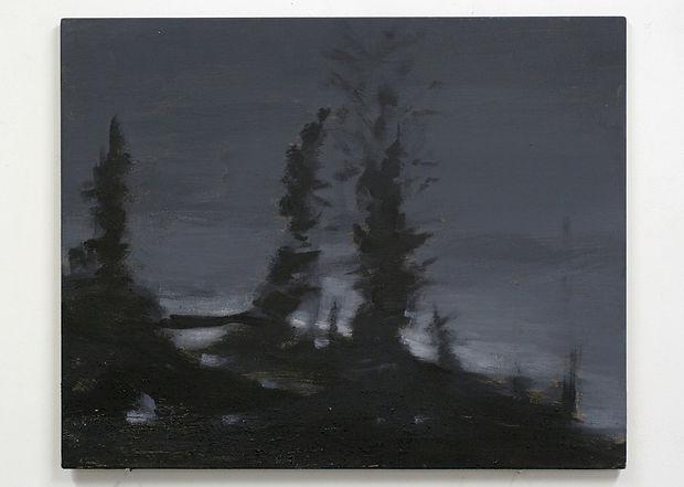 Fra_serien_Landskap_i_mørke._nr.9.____ak