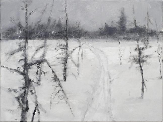 Fra_serien_Myrfrise,Vinter_2.____60x80cm