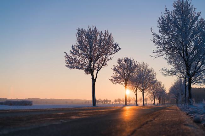 Kai atsikeli ir tamsu, grįžti namo - ir vėl tamsu ARBA lietuviška žiema, kai trūksta vitamino D