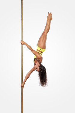 POLE TECHNIQUE