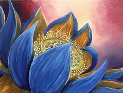 Amina's Lotus
