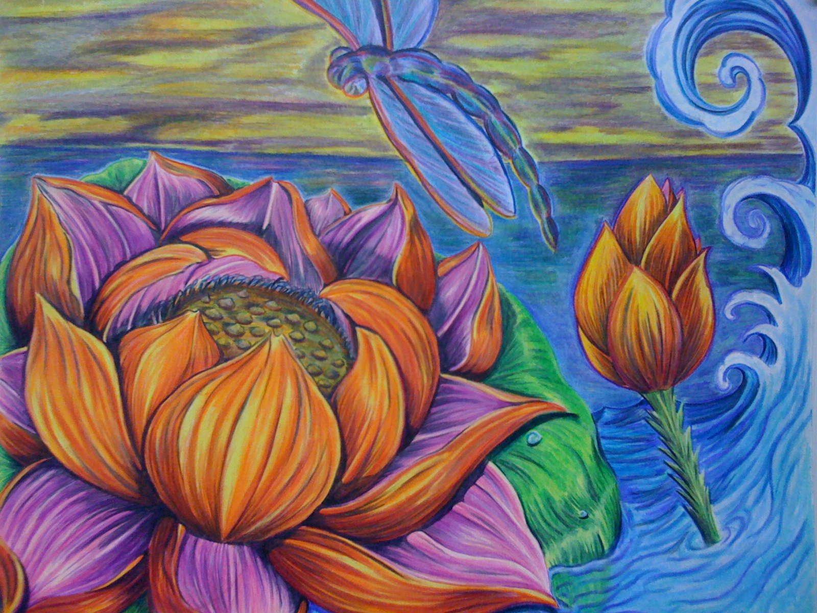 Dragonfly Lotus