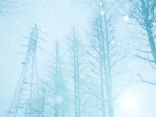 snow#1