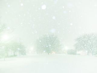 snow#5