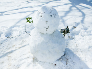 snow#6