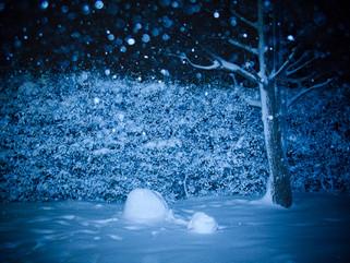 snow#2