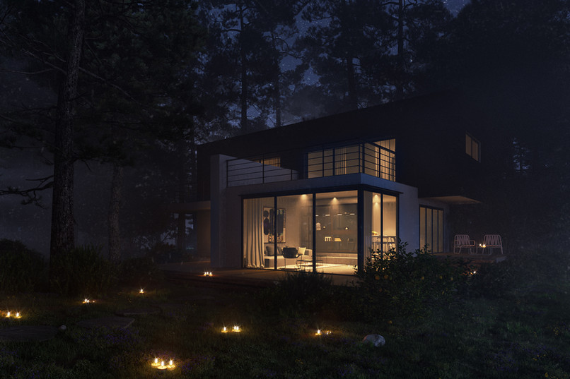 forest night.jpg