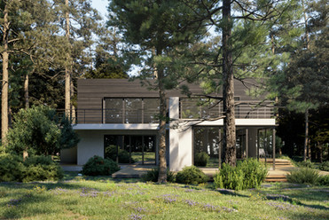 forest house 2.jpg