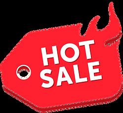 Hot Sale 2021 - Final.png