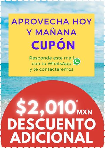 Azul Marino Patrón de Chispas Cupones (4).png