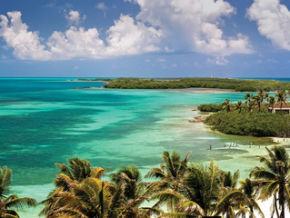 Isla Contoy, un paraíso envuelto por la naturaleza