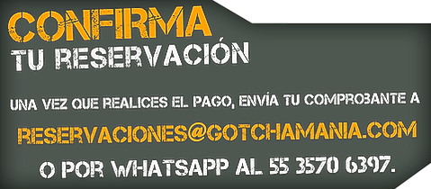 Gotchamania Gotcha