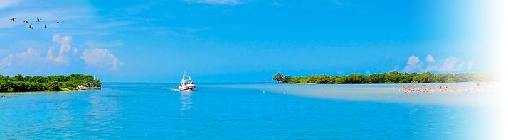 Holbox - 00 - Banner.png