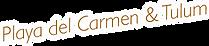 Logo - PLaya Kas y Tulum.png