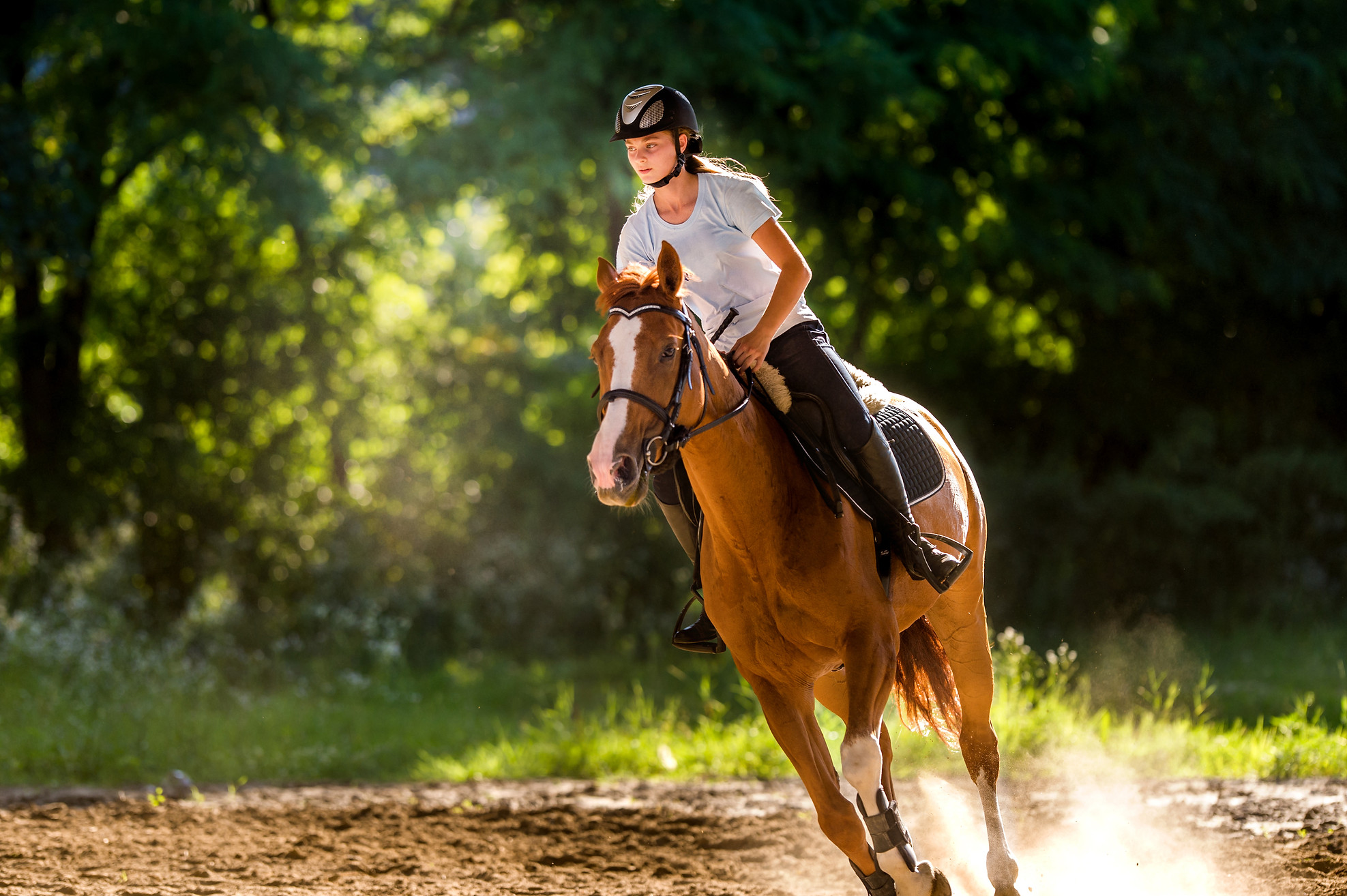 Girl riding at Pennsylvania's Silverstar Valley Saddle Club