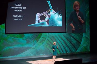 TED Talk - Dr Fiona Kerr