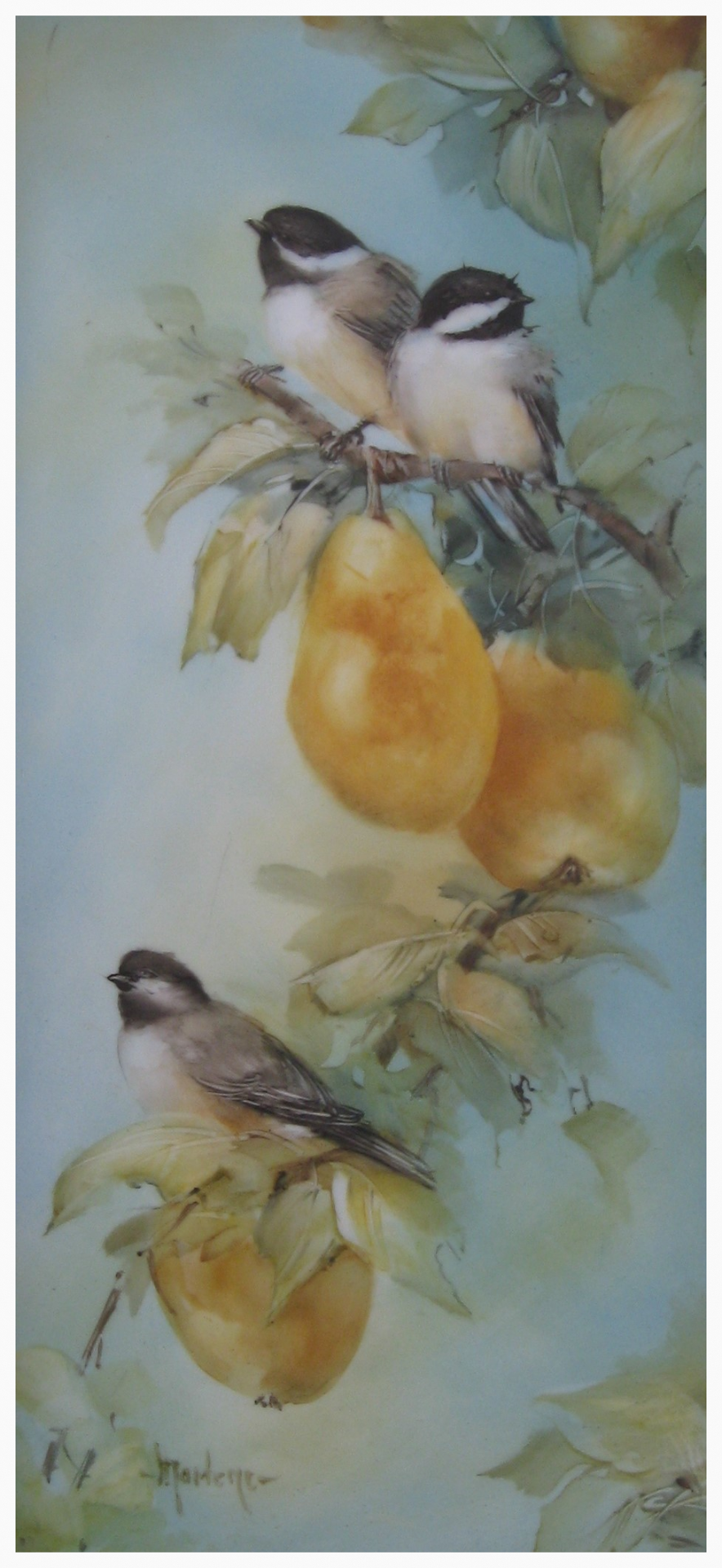 Chickadees and Pears