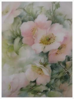 Pink Wild Roses