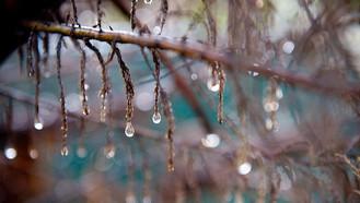 ¡Las lluvias van para largo rato!