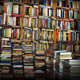 Nuestro llano en los libros