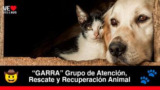 Por primera vez Villavicencio cuenta con ruta de atención de protección animal