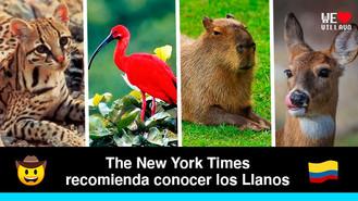 Los Llanos de Colombia uno de los 52 lugares para amar en 2021