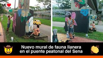 Jóvenes de Villavicencio se unieron para embellecer la ciudad