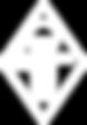Iromedica Logo