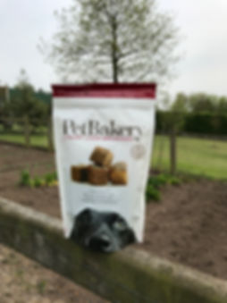 Luxury Liver Brownies | Pet Bakery | Handmade Dog Treats