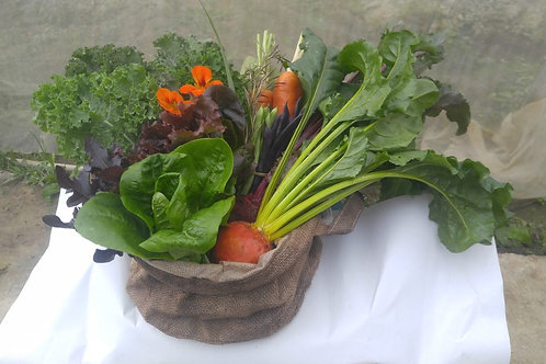 Organic Veggie Basket (Medium) 有機蔬菜籃(中)