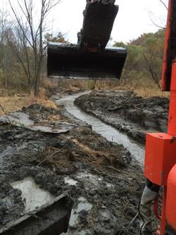 Wet Land Clearing - Medina Ohio