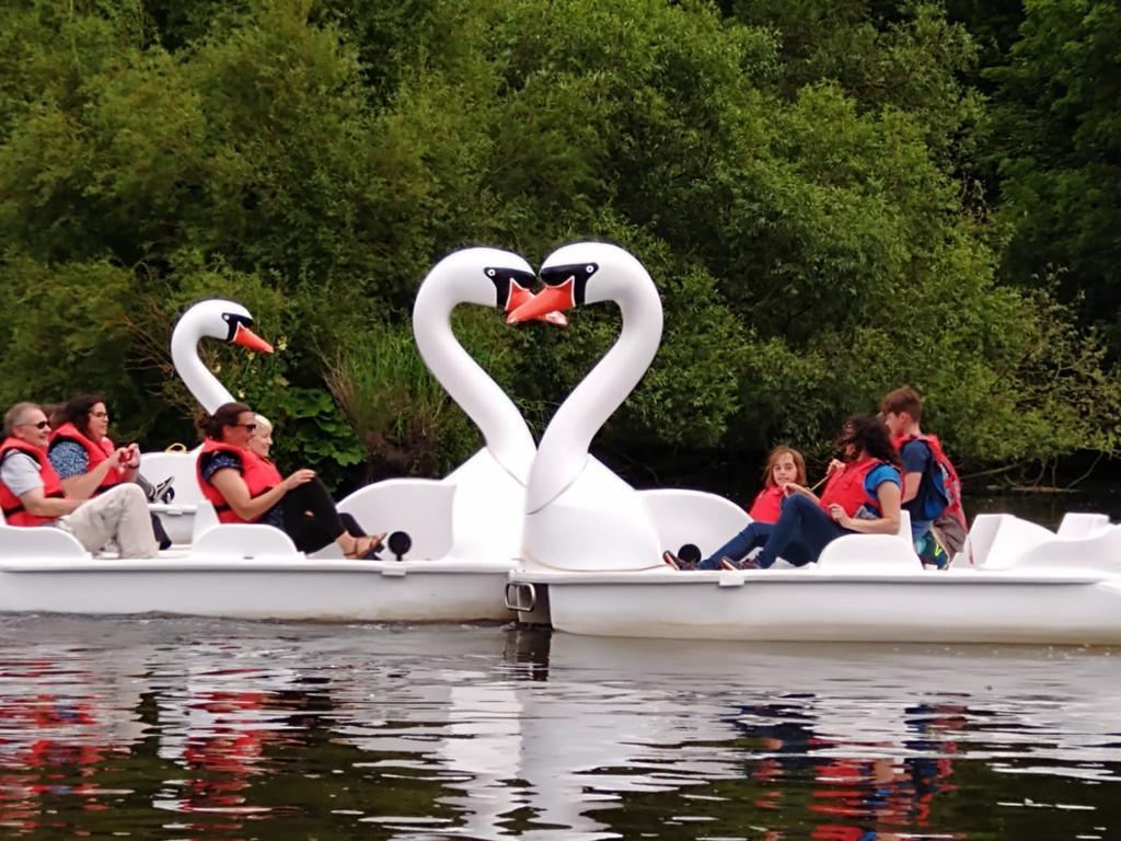 FRI-SUN: 4 Seater Swan