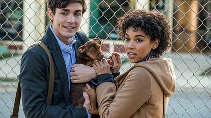 Amazon Prime: 18 filmes para se emocionar - e muito!