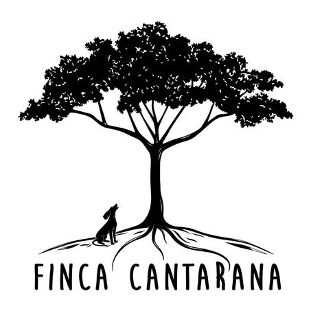 FINCA CANTARANA On white.jpg