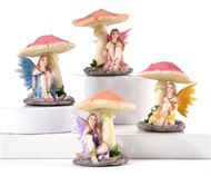 Mushrooms are nice  when hiding from the rain but will you make these tiny fairies a forever home?