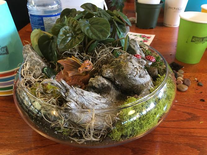 Dragon Fatnasy Garden