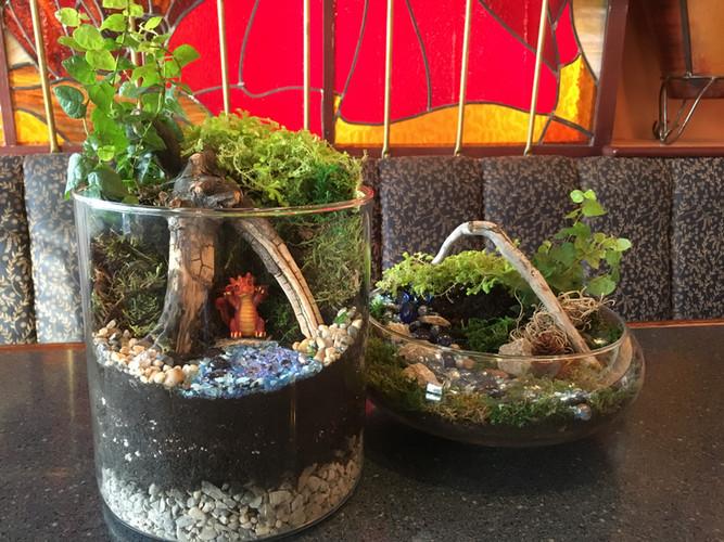 Sweet Dragon Fantasy Gardens