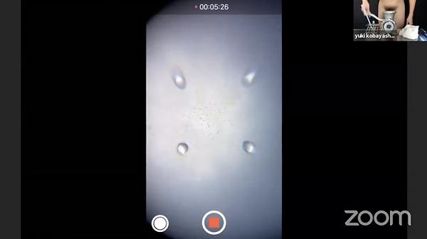 Screenshot 2021-07-01 at 19.03.18.png