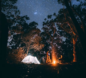 Camping in the Woods