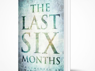The Last Six Months - Book cover