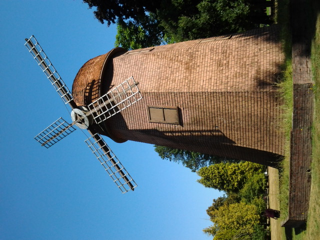 Windmill at the Clise Mansion