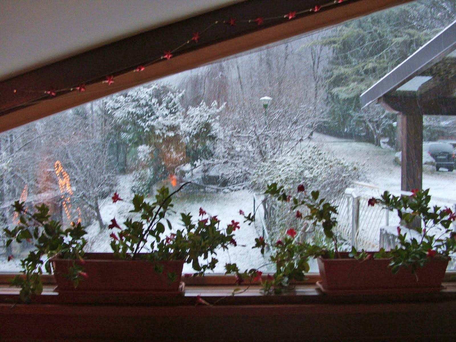 invernoDallaFinestra.jpg