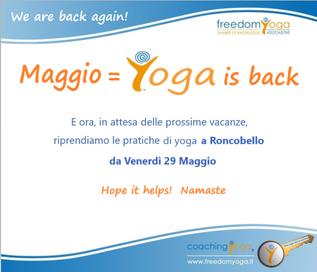 dal 25 Maggio Yoga is back!