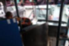 bus-040.jpg