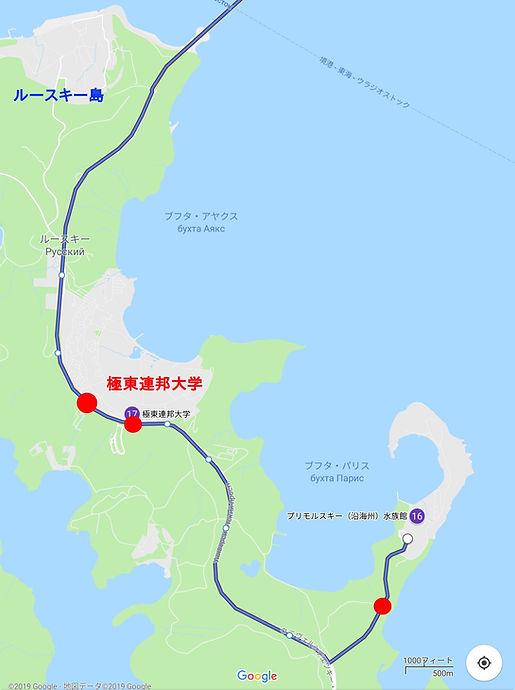vvo-bus15-route3.jpg