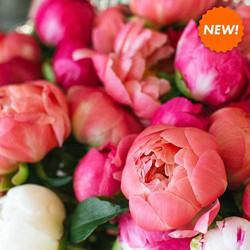 Magnolia-Peony-Fragrance-candle-thesoyfa